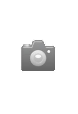 Max Lichtegg