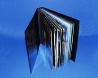 "12"" LP Album schwarz"